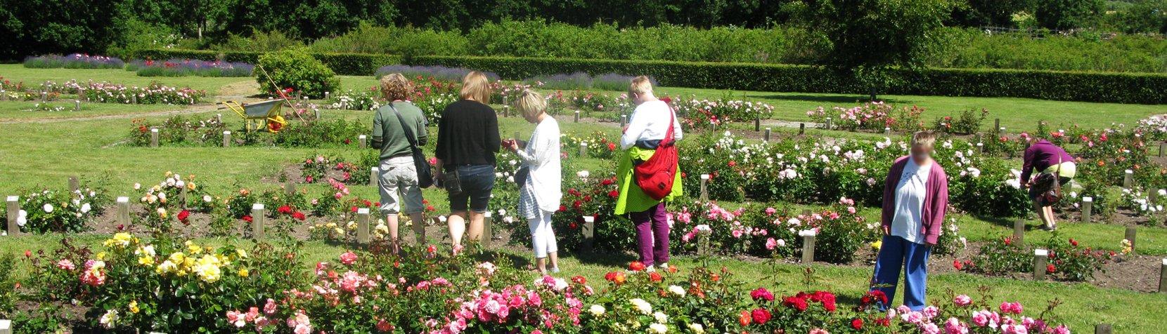 Besøg i blomsterpark