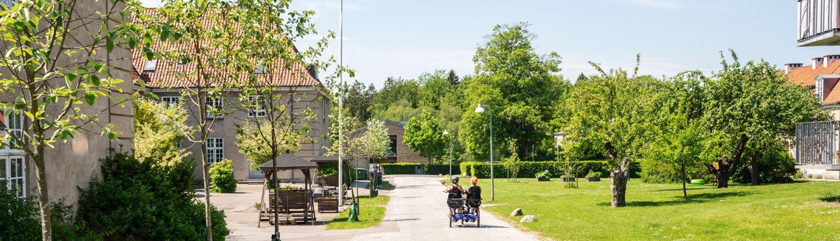 At cykle er en af aktiviterne i Pensionistklubben